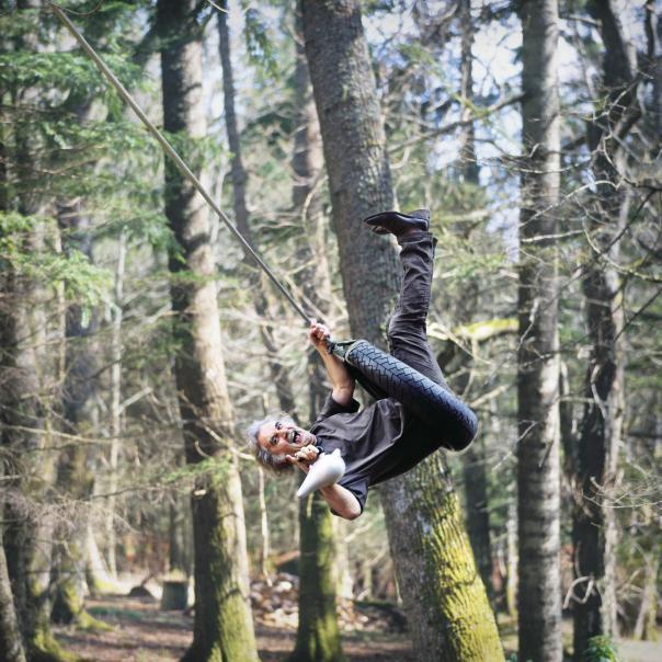 BC Photo Trees Hi Res Jpeg